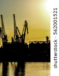 port cranes against the evening ... | Shutterstock . vector #562001521