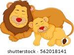 cute lion cartoon sleeping with ...   Shutterstock .eps vector #562018141