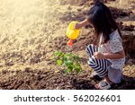 asian little girl watering... | Shutterstock . vector #562026601