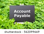 "Small photo of ""Account Payable "" words written on blackboard with green grass background"