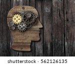 Brain Activity  Psychology ...
