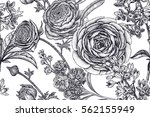 spring flowers seamless floral... | Shutterstock .eps vector #562155949