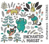 enchanted forest. colorful hand ... | Shutterstock .eps vector #562158061