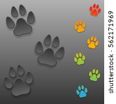 animal paw print on a dark... | Shutterstock .eps vector #562171969
