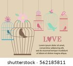 vintage bird cages and flowers. ... | Shutterstock .eps vector #562185811