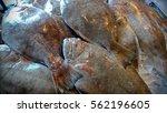fresh fish  sold in the market.    Shutterstock . vector #562196605