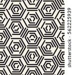 vector seamless pattern. modern ... | Shutterstock .eps vector #562225939