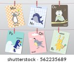 cute zoo alphabet with funny... | Shutterstock .eps vector #562235689