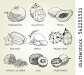 hand drawn set of different... | Shutterstock .eps vector #562252531