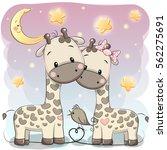 two cute giraffes on a stars... | Shutterstock . vector #562275691
