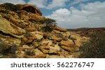 cave paintings laas geel rock... | Shutterstock . vector #562276747