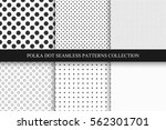 collection of seamless dots... | Shutterstock .eps vector #562301701