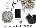 stylized photo. minimal flatlay ... | Shutterstock . vector #562382281