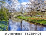 spring blossom nature.... | Shutterstock . vector #562384405