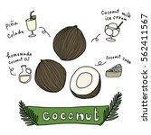 coconuts with various coconut... | Shutterstock .eps vector #562411567