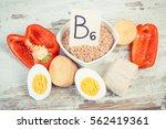 vintage photo  ingredients or... | Shutterstock . vector #562419361