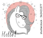 cute horse and glasses sketch... | Shutterstock .eps vector #562421377