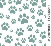 paw print seamless. traces of... | Shutterstock .eps vector #562430044