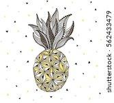 stylized pineapple artwork ... | Shutterstock .eps vector #562433479