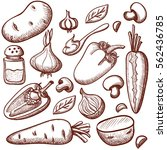 vector set of ingredients for... | Shutterstock .eps vector #562436785