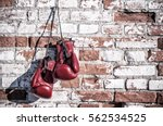 boxing gloves on the brick wall.... | Shutterstock . vector #562534525