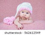 beautiful little girl in pink... | Shutterstock . vector #562612549