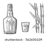 glass and bottle of rum with... | Shutterstock . vector #562650109