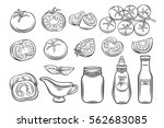 set hand drawn tomato and sauce.... | Shutterstock .eps vector #562683085