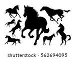 Stock vector horses silhouette set vector illustration 562694095