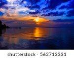 Florida's Sunset