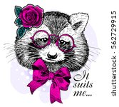 vector raccoon with rose and... | Shutterstock .eps vector #562729915