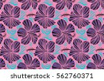 violet and pink hibiscus... | Shutterstock . vector #562760371
