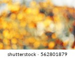 yellow circular bokeh | Shutterstock . vector #562801879