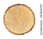 Detailed Piece Of Circular Fla...