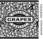 retro grapes harvest label... | Shutterstock . vector #562833241