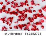 Red Rose Petals Scattered On...