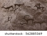 cave paintings of primitive man....   Shutterstock . vector #562885369