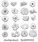 flower set | Shutterstock . vector #562899355
