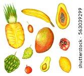 raster pencil drawn vivid set... | Shutterstock . vector #563039299