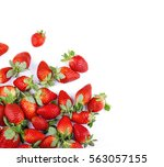 strawberries on white... | Shutterstock . vector #563057155