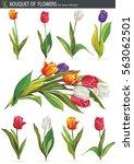 tulips in mixed colors ... | Shutterstock .eps vector #563062501