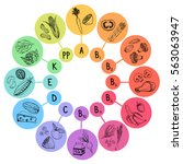 infographic   vitamines a  b  c ... | Shutterstock .eps vector #563063947