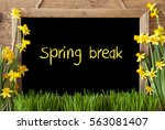 Flower Narcissus  Chalkboard ...
