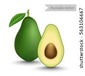 avocado and slice vector... | Shutterstock .eps vector #563106667