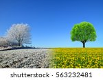 winter and spring landscape... | Shutterstock . vector #563232481