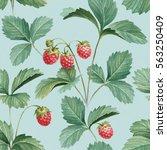 watercolor illustration of... | Shutterstock . vector #563250409