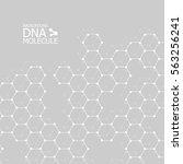 abstract dna background. vector ... | Shutterstock .eps vector #563256241