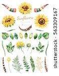handpainted watercolor... | Shutterstock . vector #563309167