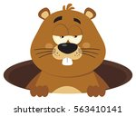 cute marmot cartoon mascot... | Shutterstock . vector #563410141
