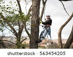Lumberjack With Saw And Harnes...